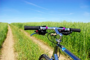 Chiropractic Care for Biking From Total Chiro